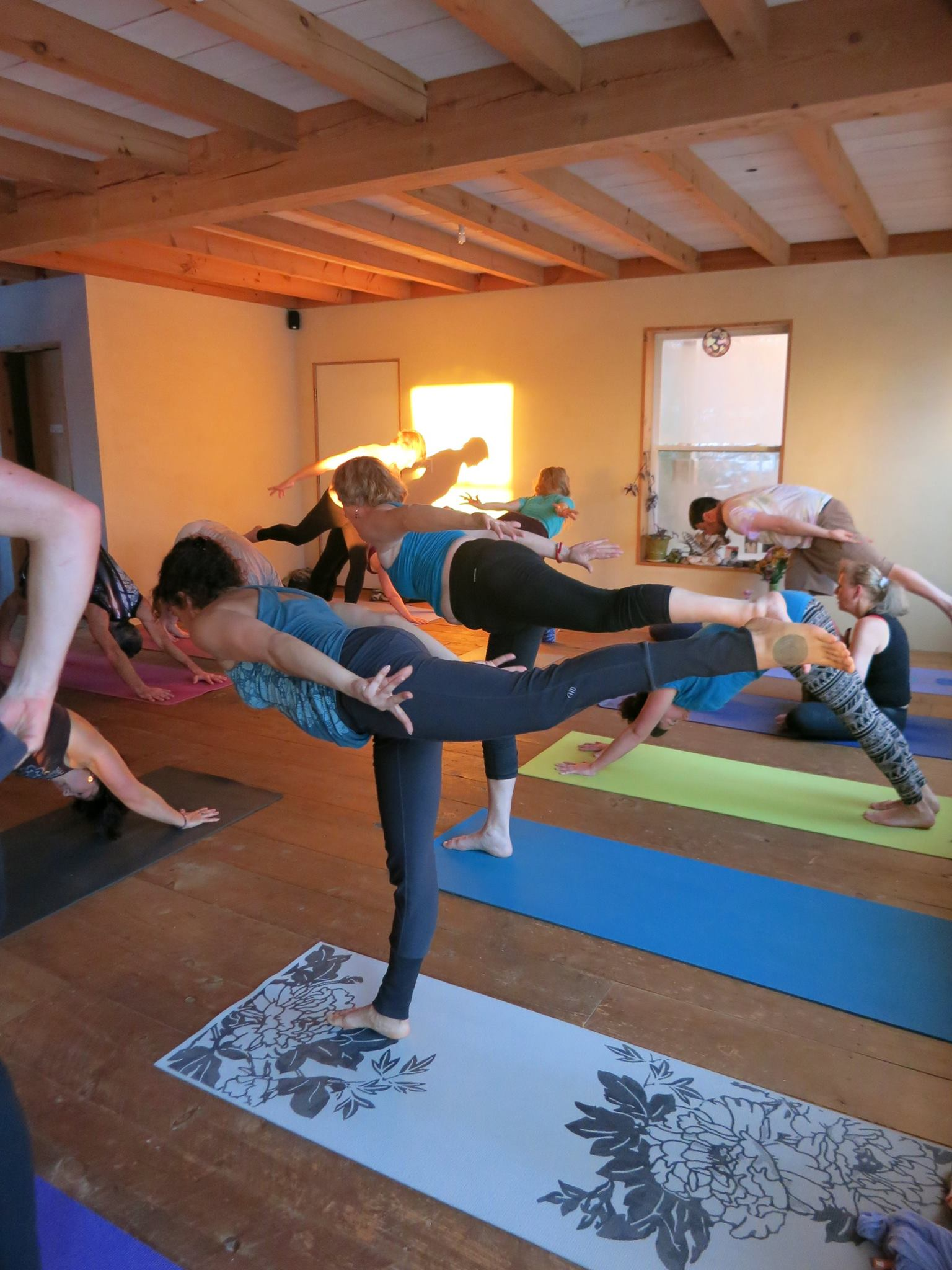 21 Day Immersion Teacher Training: July 7th-27th, 2018